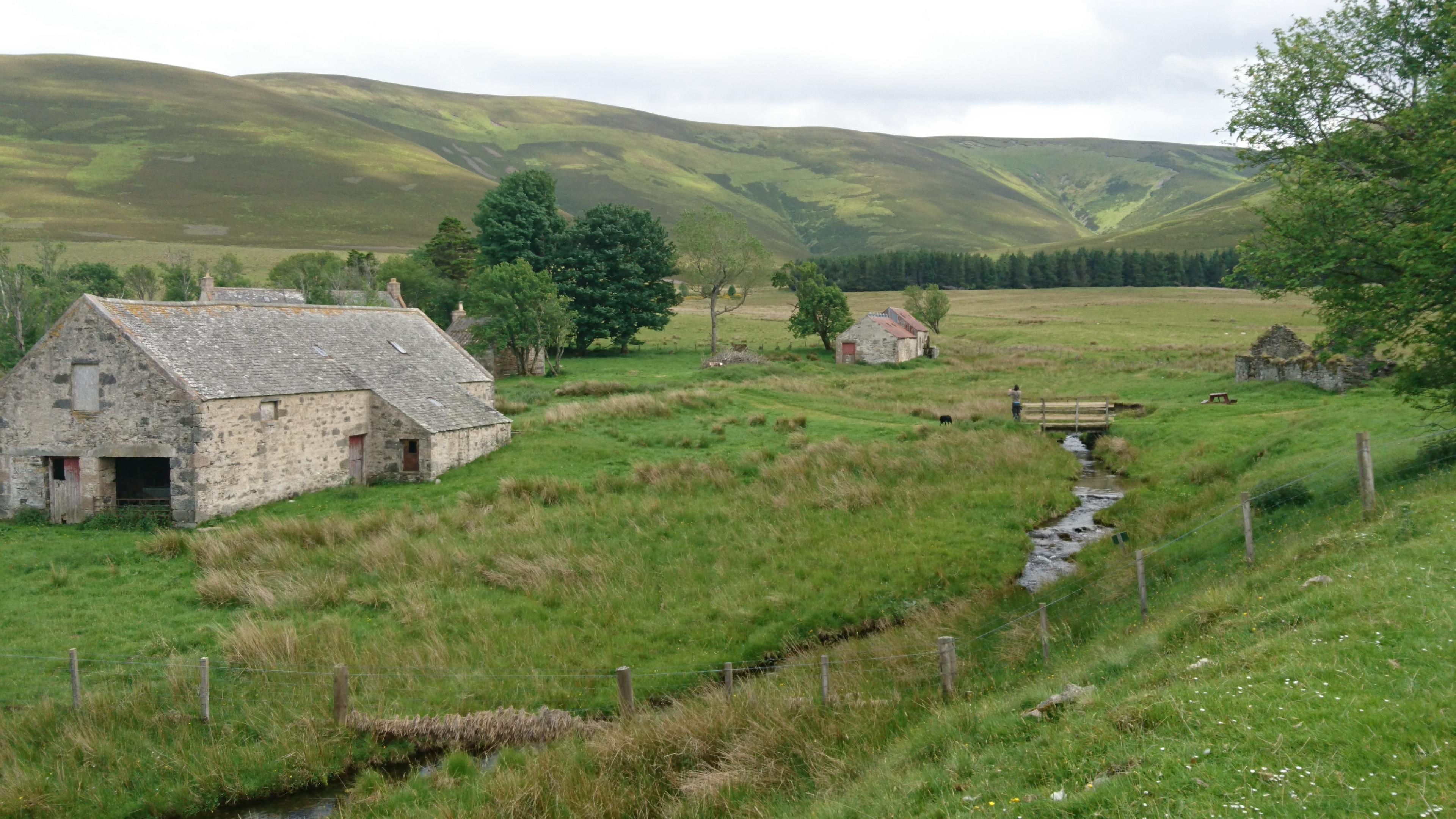 Scalan mills