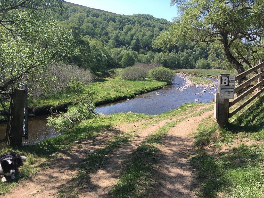 River Livet Fishing