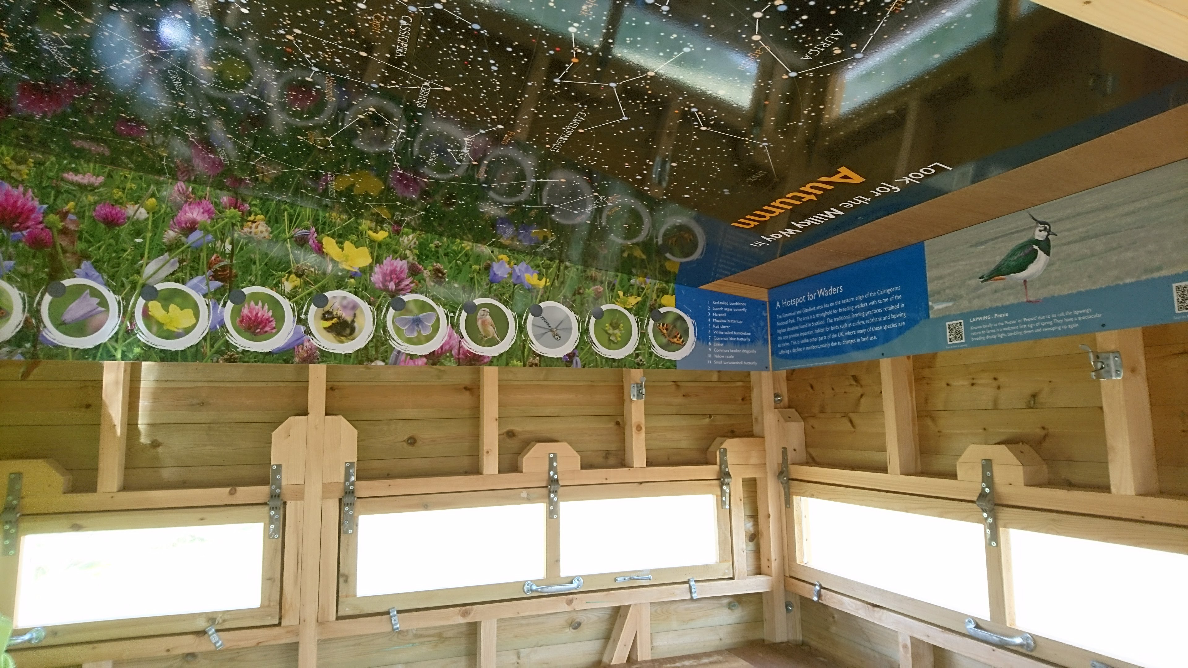 bird hide displays 2