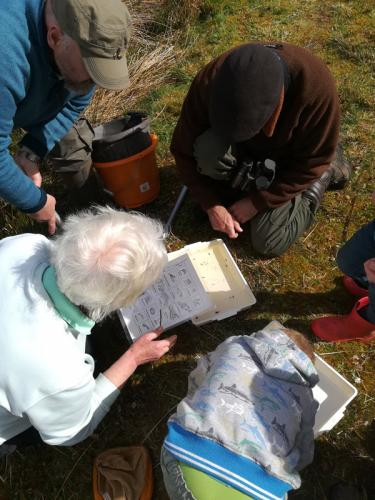 Community Natural heritage Pond dipping